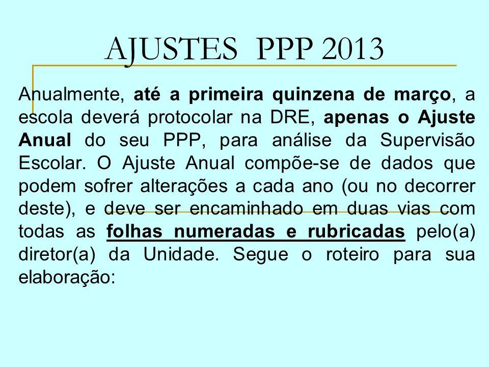 AJUSTES PPP 2013