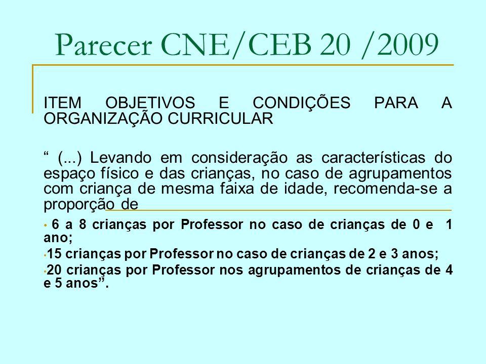Parecer CNE/CEB 20 /2009 ITEM OBJETIVOS E CONDIÇÕES PARA A ORGANIZAÇÃO CURRICULAR.