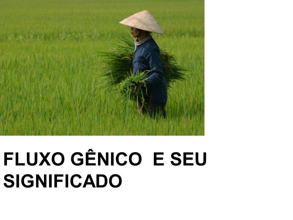 FLUXO GÊNICO E SEU SIGNIFICADO
