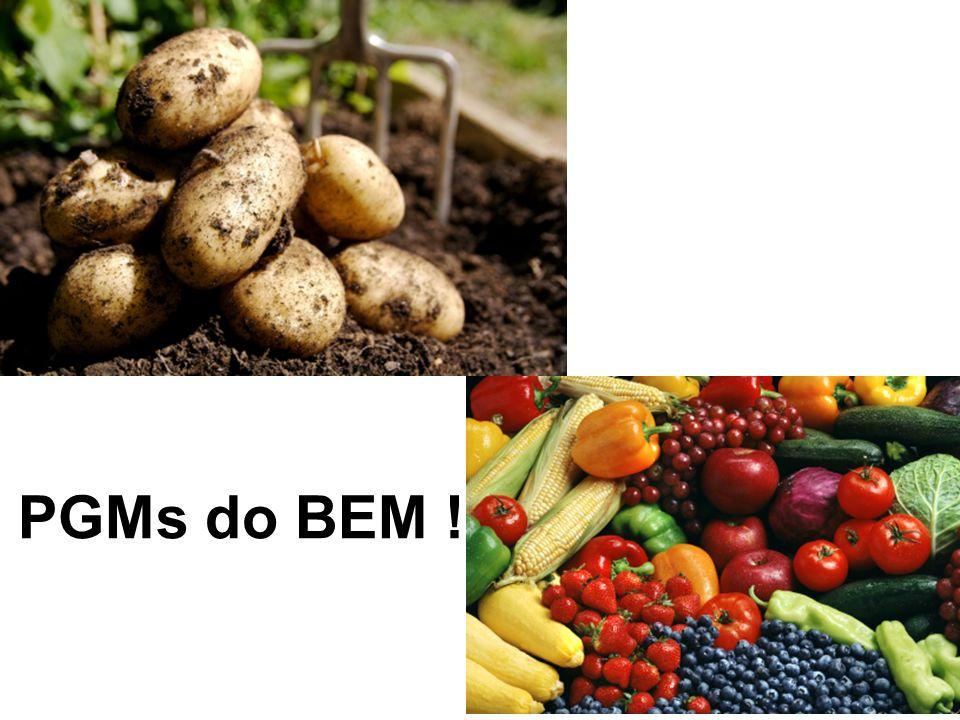 PGMs do BEM !