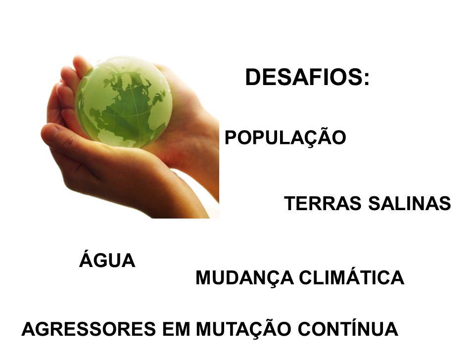 DESAFIOS: POPULAÇÃO TERRAS SALINAS ÁGUA MUDANÇA CLIMÁTICA