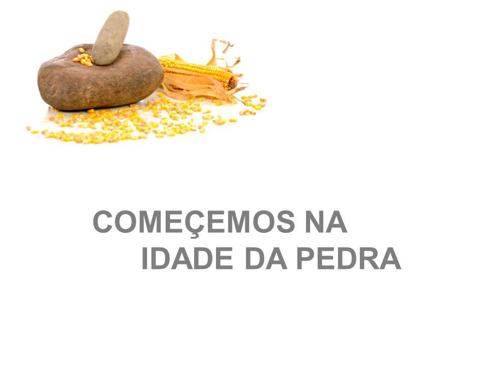 COMEÇEMOS NA IDADE DA PEDRA