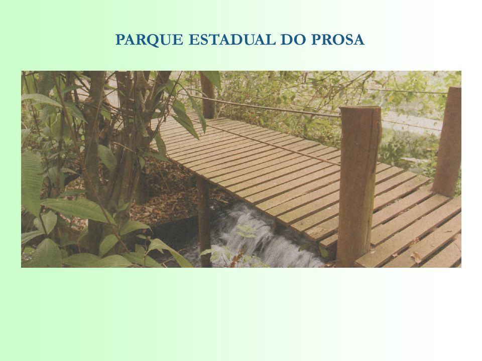 PARQUE ESTADUAL DO PROSA