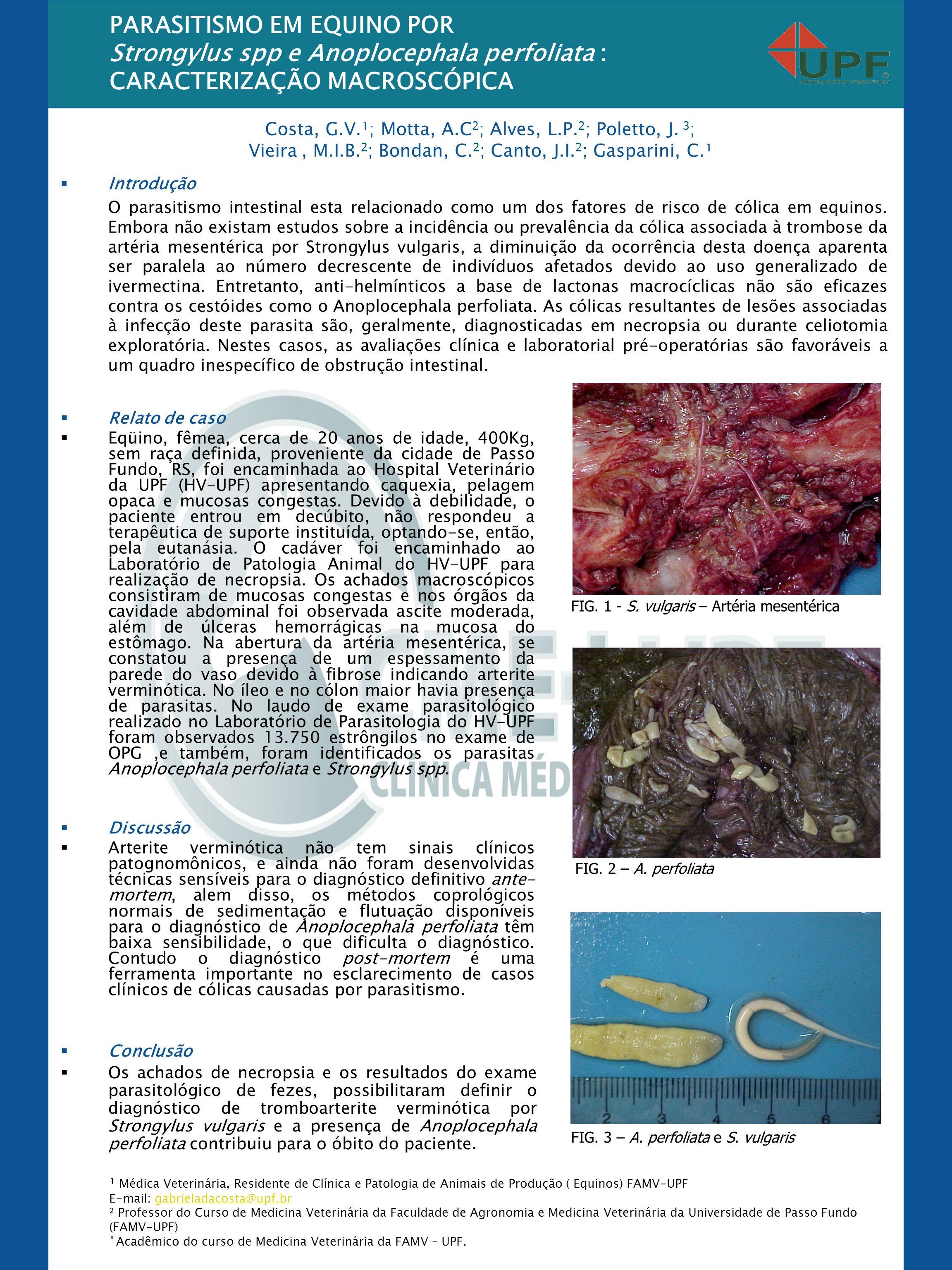 PARASITISMO EM EQUINO POR Strongylus spp e Anoplocephala perfoliata :