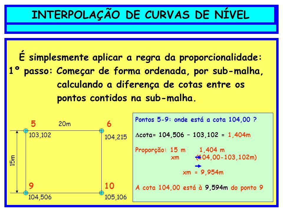 INTERPOLAÇÃO DE CURVAS DE NÍVEL