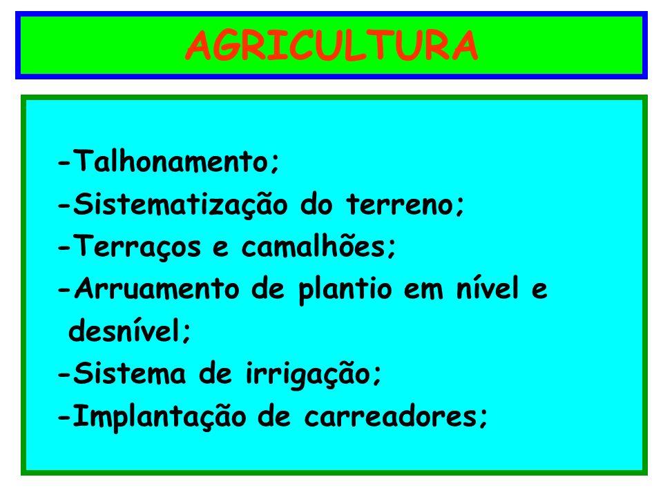 AGRICULTURA -Talhonamento; -Sistematização do terreno;