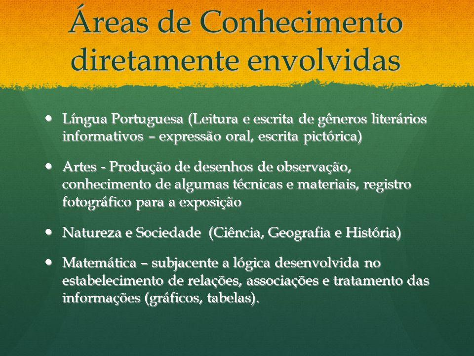 Áreas de Conhecimento diretamente envolvidas