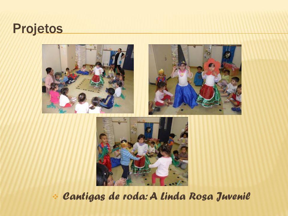 Cantigas de roda: A Linda Rosa Juvenil