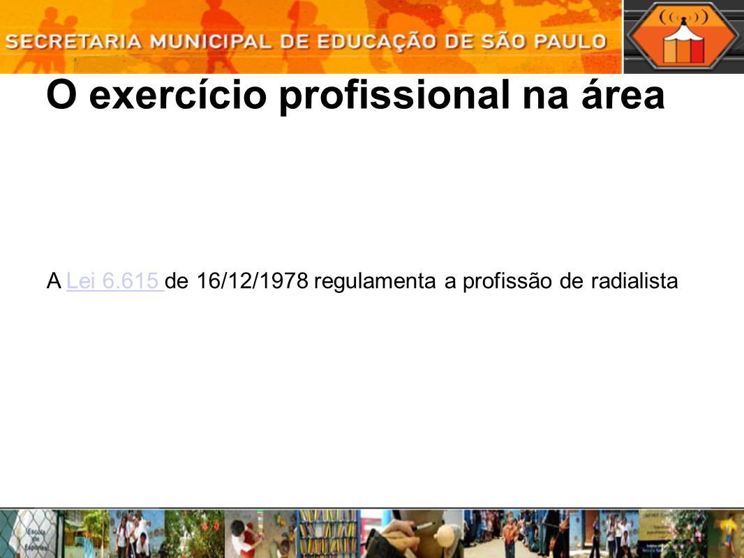 O exercício profissional na área