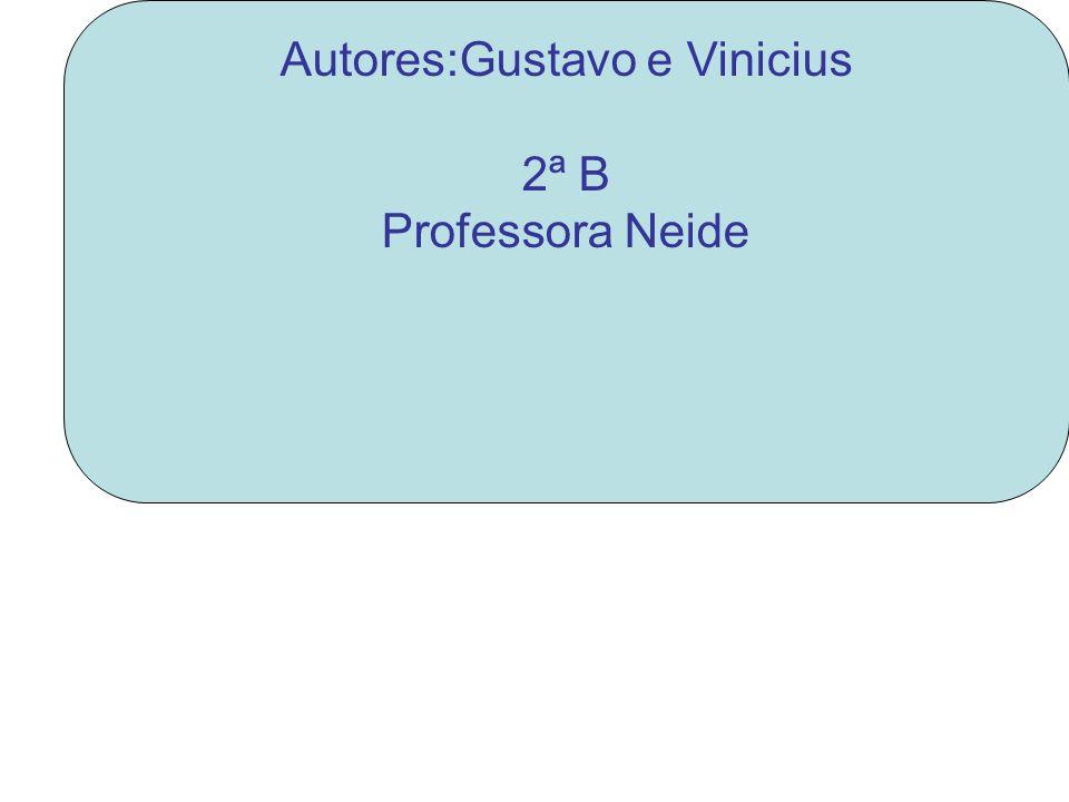 Autores:Gustavo e Vinicius