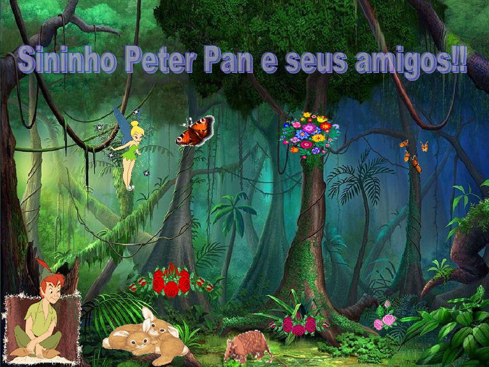 Sininho Peter Pan e seus amigos!!