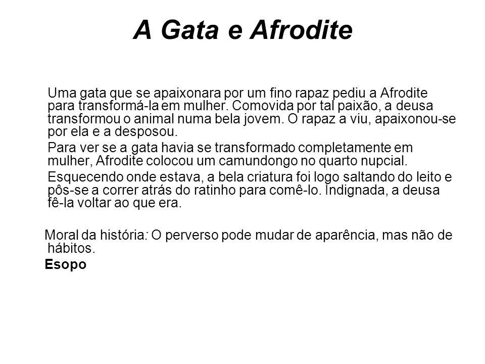 A Gata e Afrodite