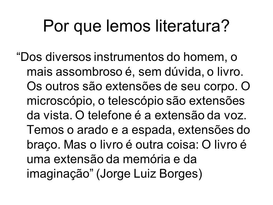 Por que lemos literatura