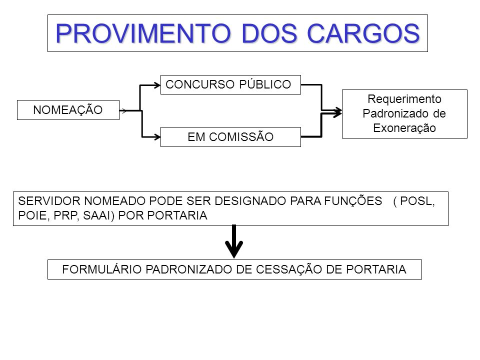 PROVIMENTO DOS CARGOS CONCURSO PÚBLICO