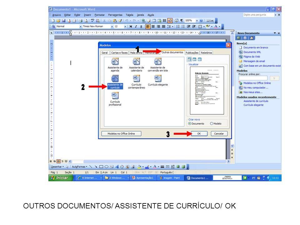 OUTROS DOCUMENTOS/ ASSISTENTE DE CURRÍCULO/ OK