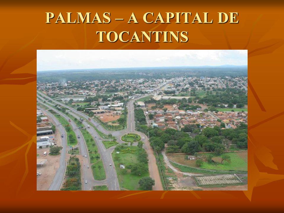 PALMAS – A CAPITAL DE TOCANTINS