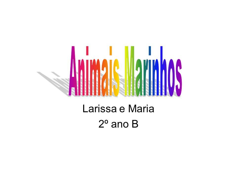 Animais Marinhos Larissa e Maria 2º ano B