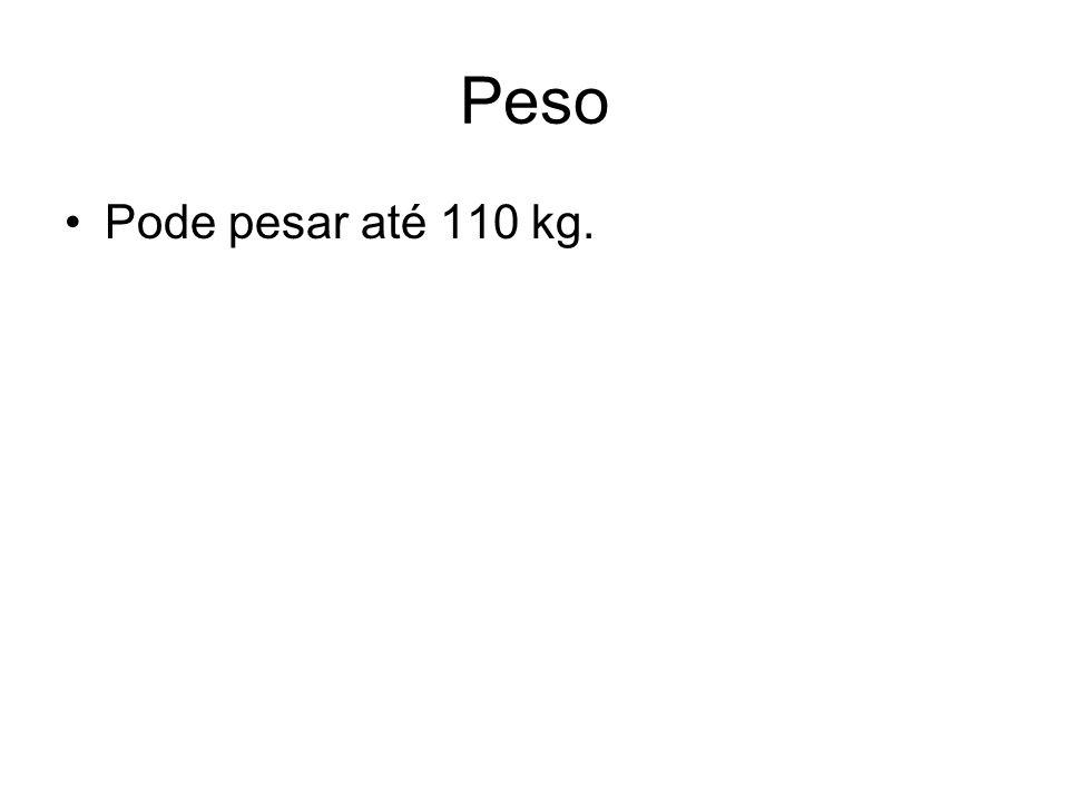 Peso Pode pesar até 110 kg.