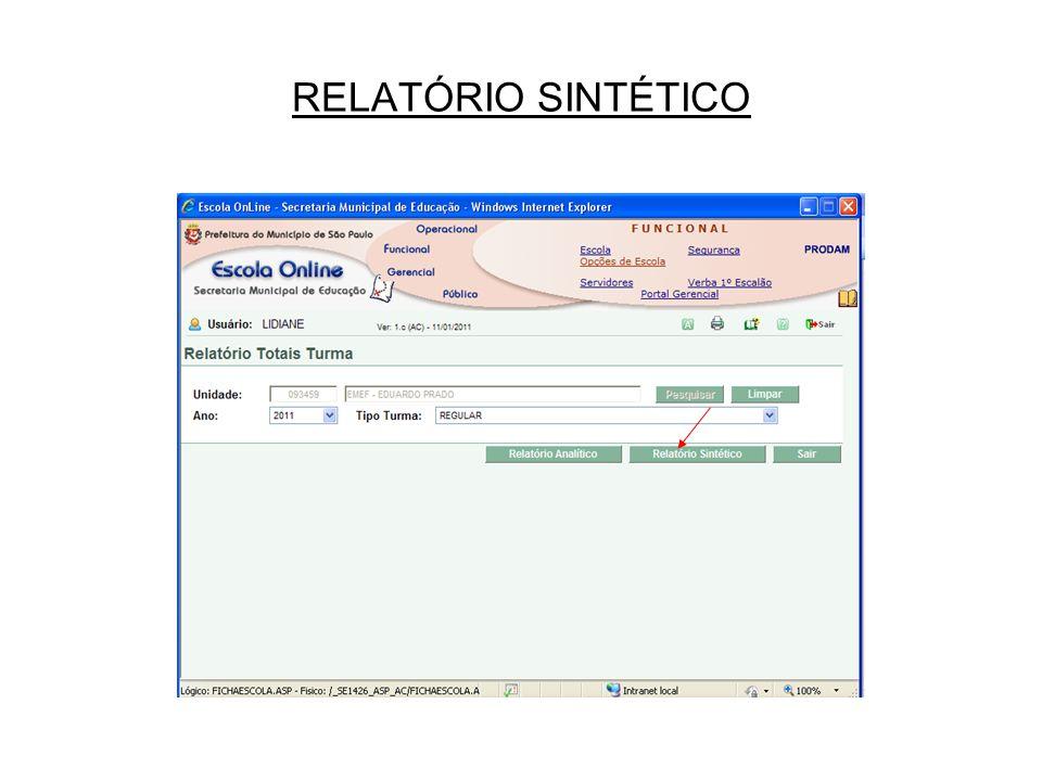 RELATÓRIO SINTÉTICO