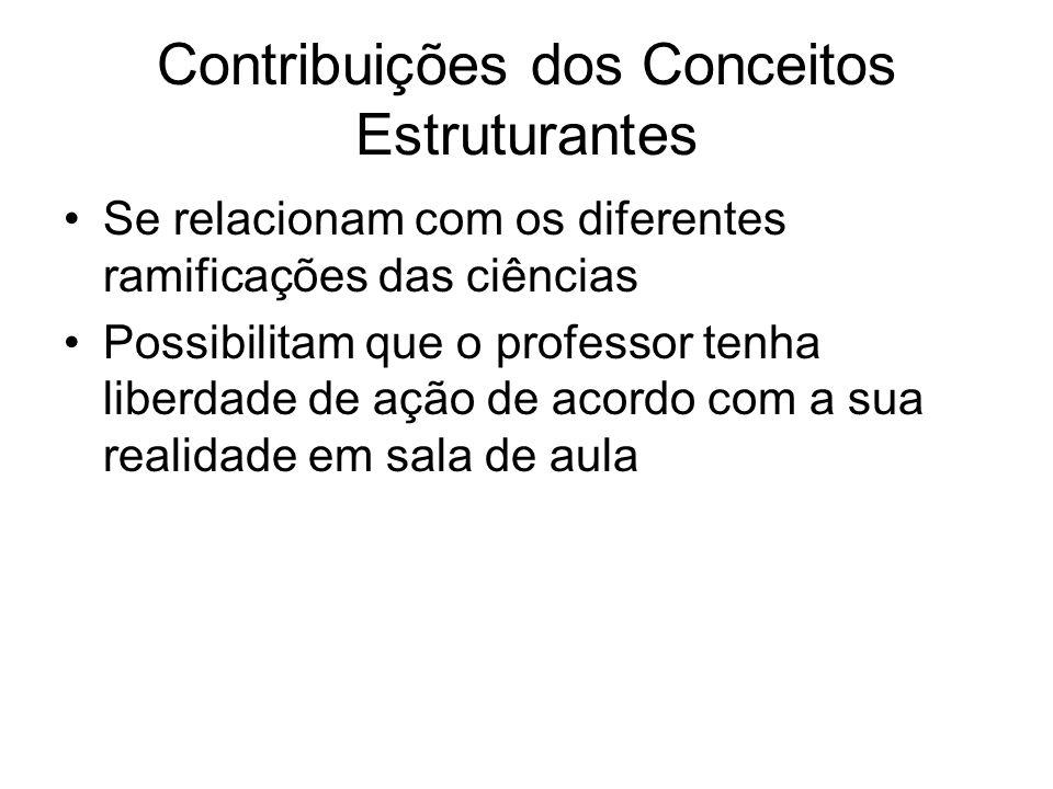 Contribuições dos Conceitos Estruturantes