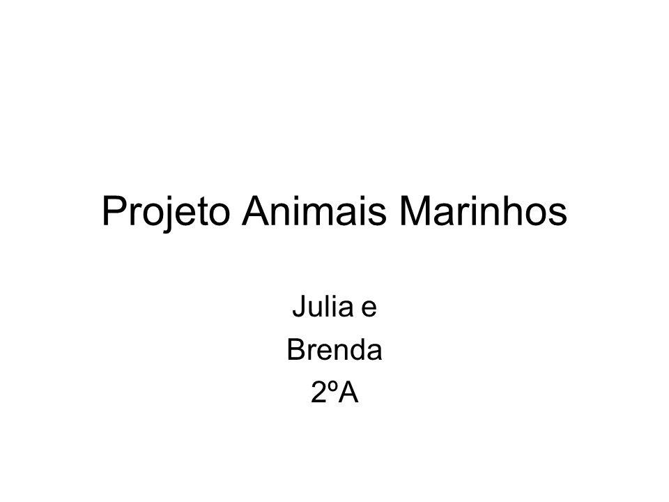 Projeto Animais Marinhos