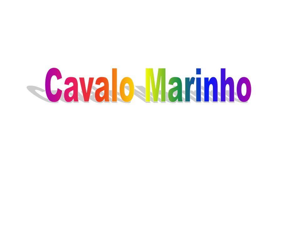 Cavalo Marinho