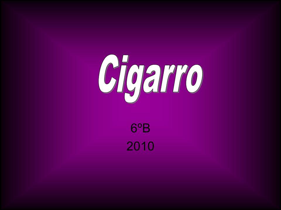 Cigarro 6ºB 2010