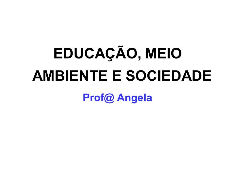 EDUCAÇÃO, MEIO AMBIENTE E SOCIEDADE