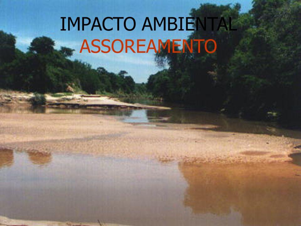 IMPACTO AMBIENTAL ASSOREAMENTO