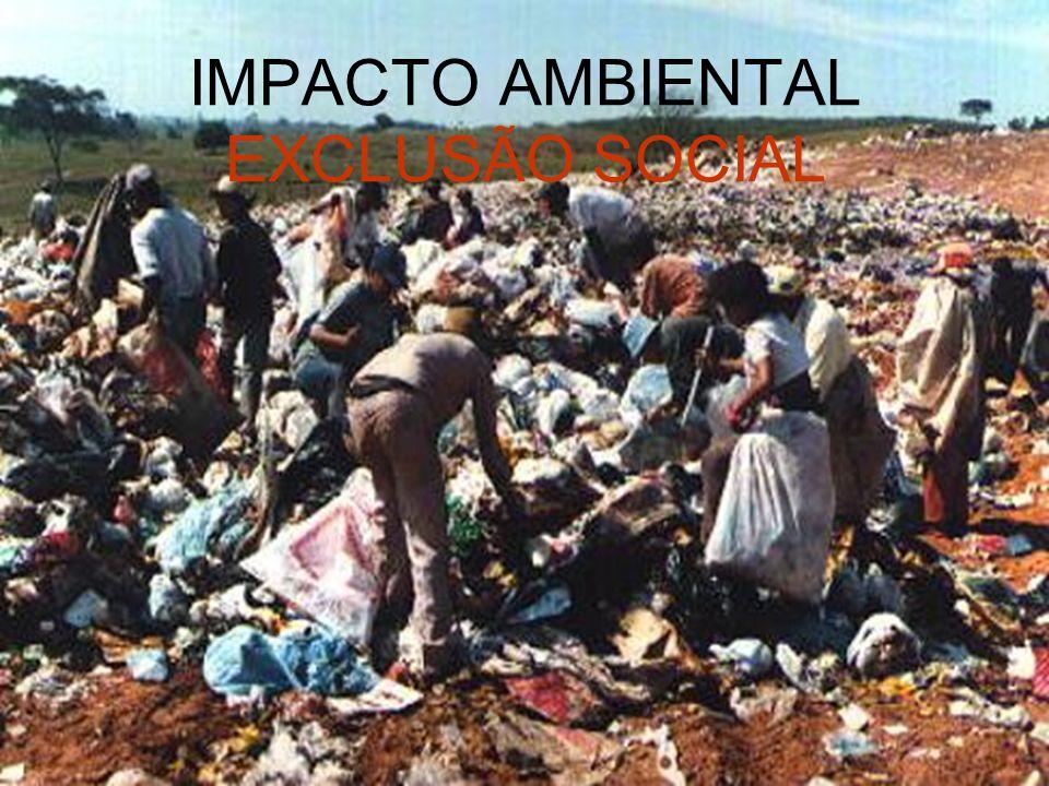 IMPACTO AMBIENTAL EXCLUSÃO SOCIAL