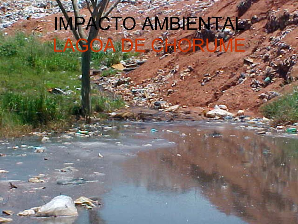 IMPACTO AMBIENTAL LAGOA DE CHORUME