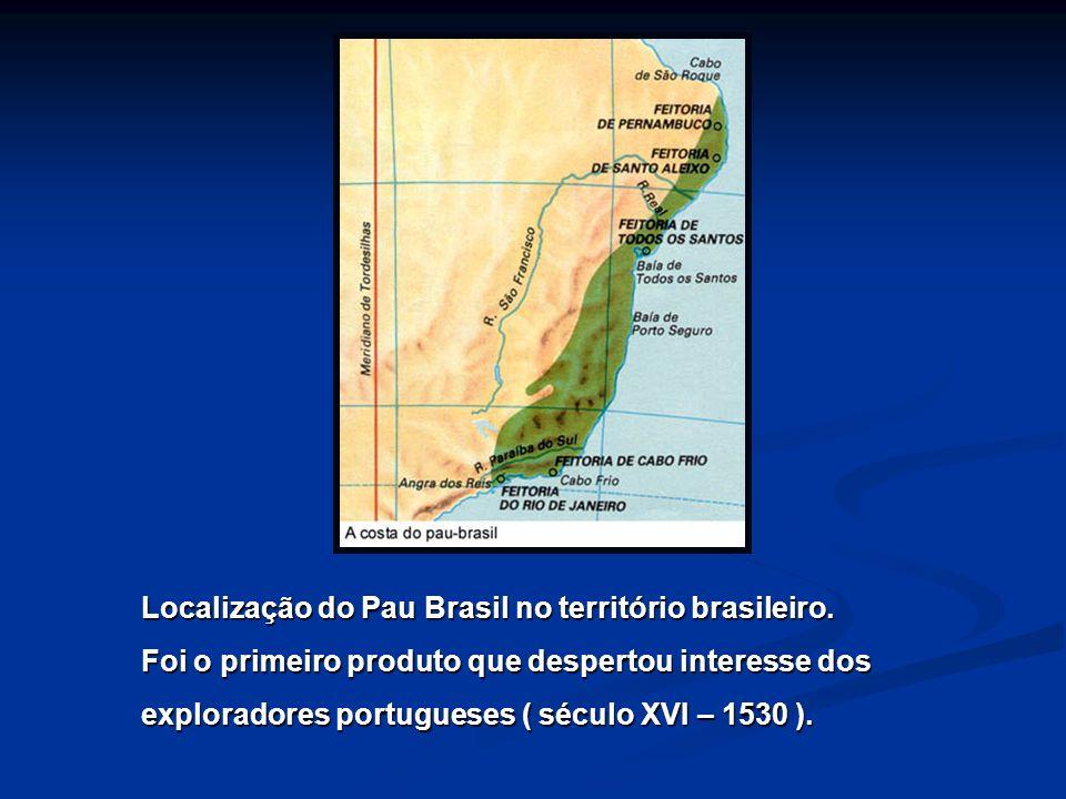 Localização do Pau Brasil no território brasileiro.
