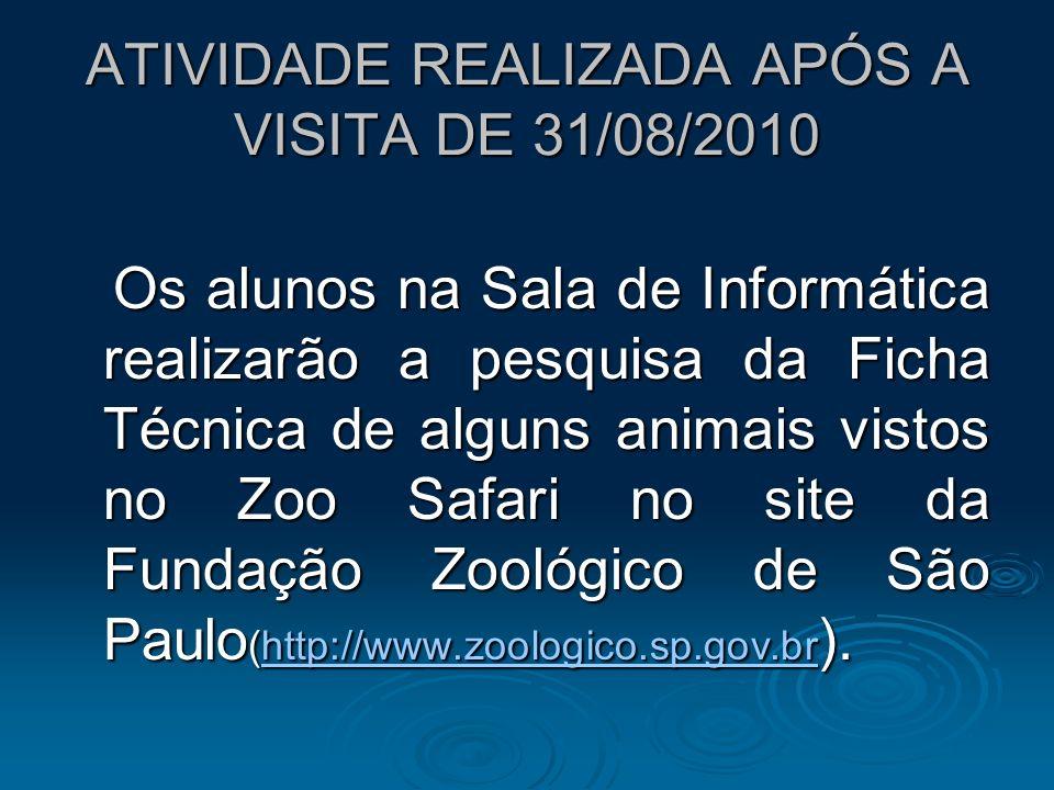 ATIVIDADE REALIZADA APÓS A VISITA DE 31/08/2010