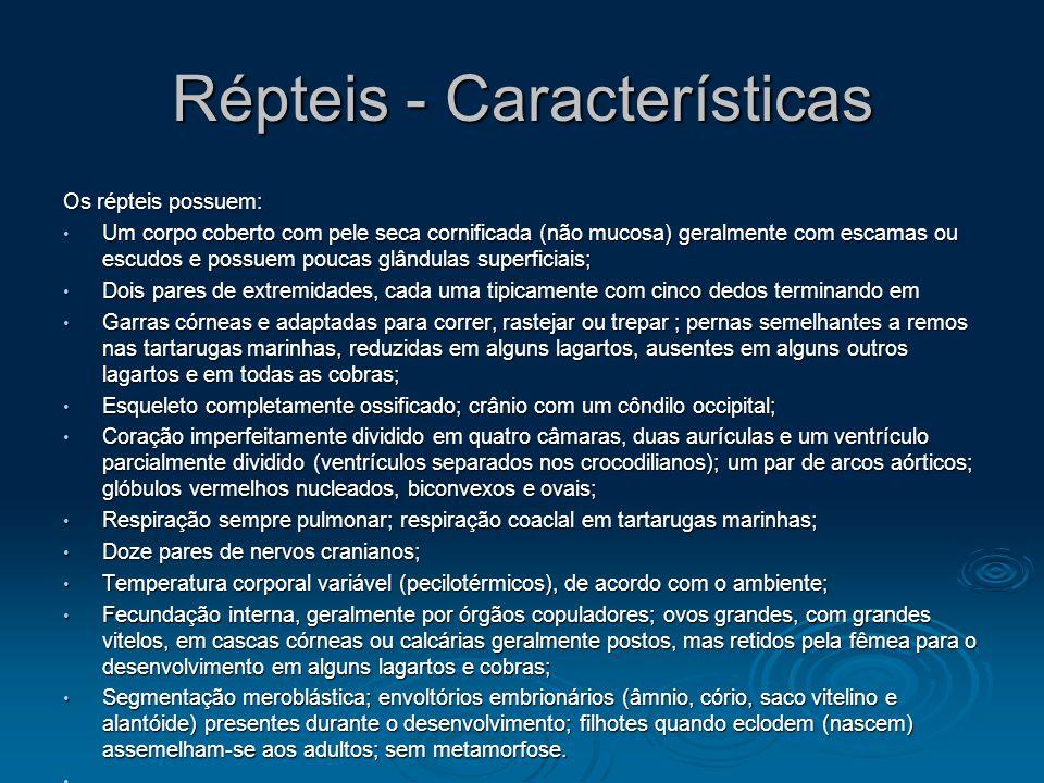 Répteis - Características