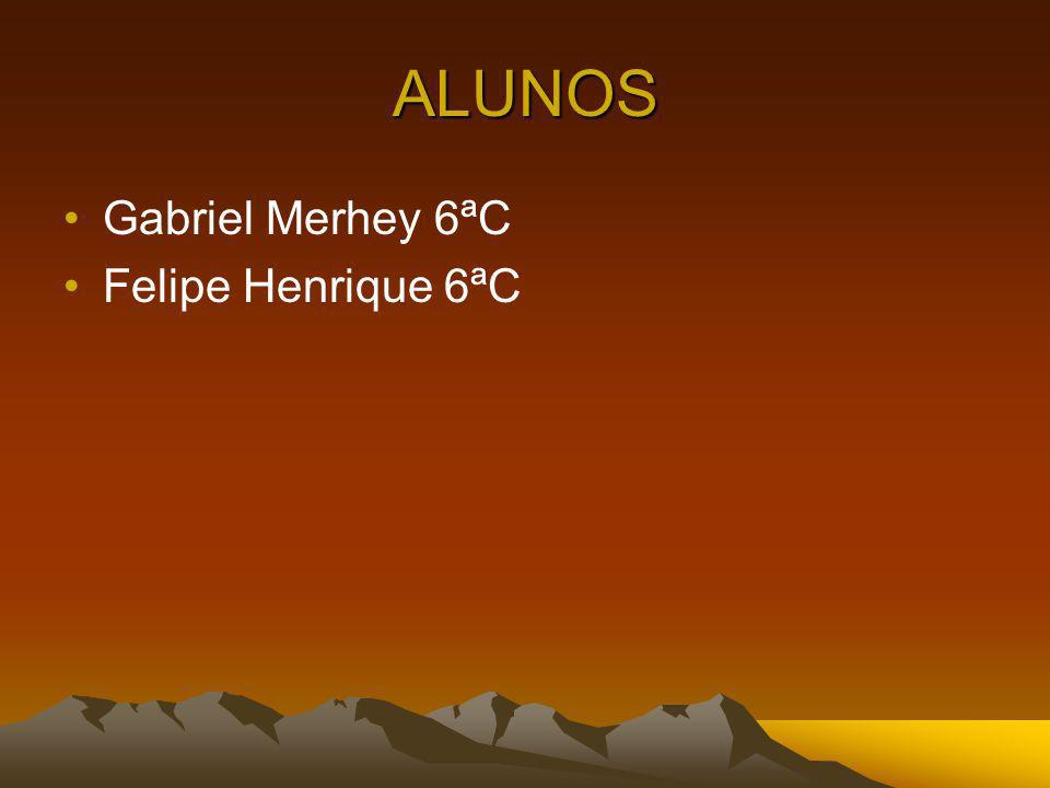 ALUNOS Gabriel Merhey 6ªC Felipe Henrique 6ªC
