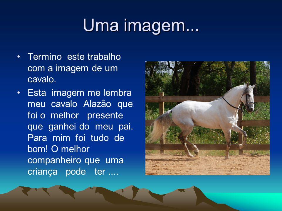 Uma imagem... Termino este trabalho com a imagem de um cavalo.