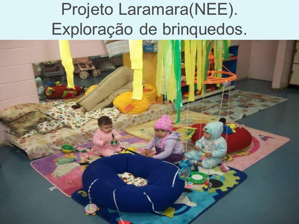 Projeto Laramara(NEE). Exploração de brinquedos.