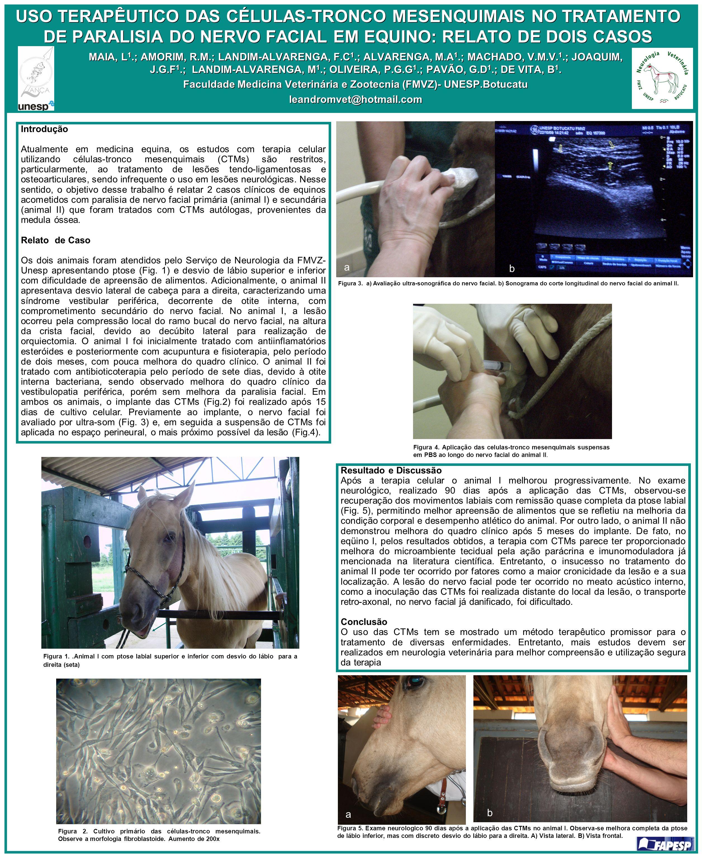 Faculdade Medicina Veterinária e Zootecnia (FMVZ)- UNESP.Botucatu
