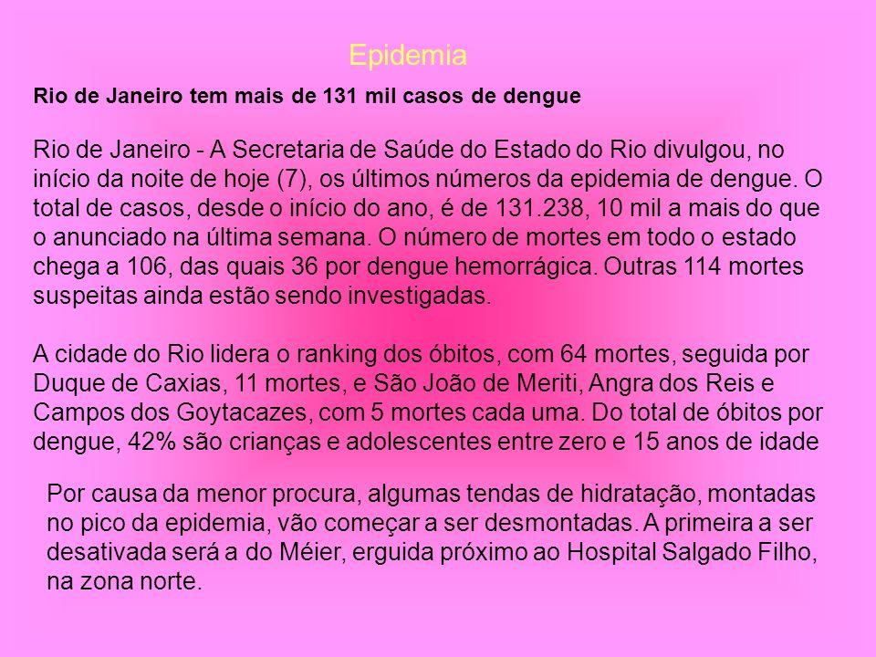 Rio de Janeiro tem mais de 131 mil casos de dengue
