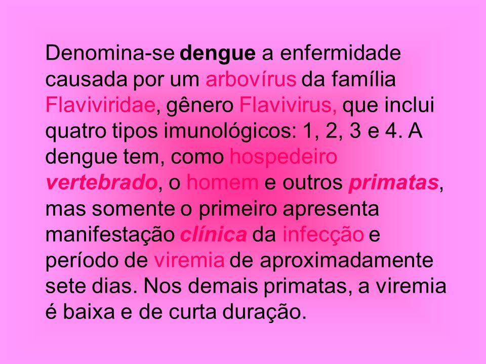Denomina-se dengue a enfermidade causada por um arbovírus da família Flaviviridae, gênero Flavivirus, que inclui quatro tipos imunológicos: 1, 2, 3 e 4.