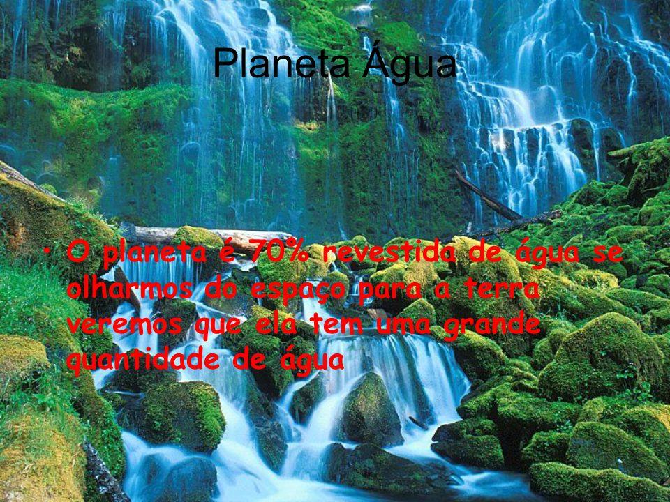 Planeta Água O planeta é 70% revestida de água se olharmos do espaço para a terra veremos que ela tem uma grande quantidade de água.