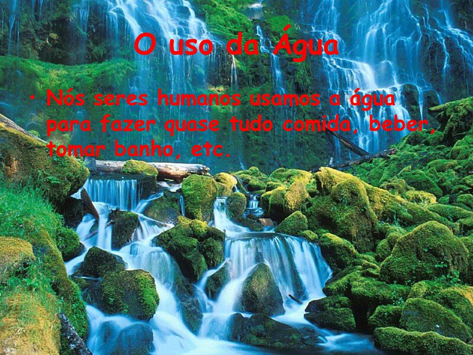 O uso da ÁguaNós seres humanos usamos a água para fazer quase tudo comida, beber, tomar banho, etc.