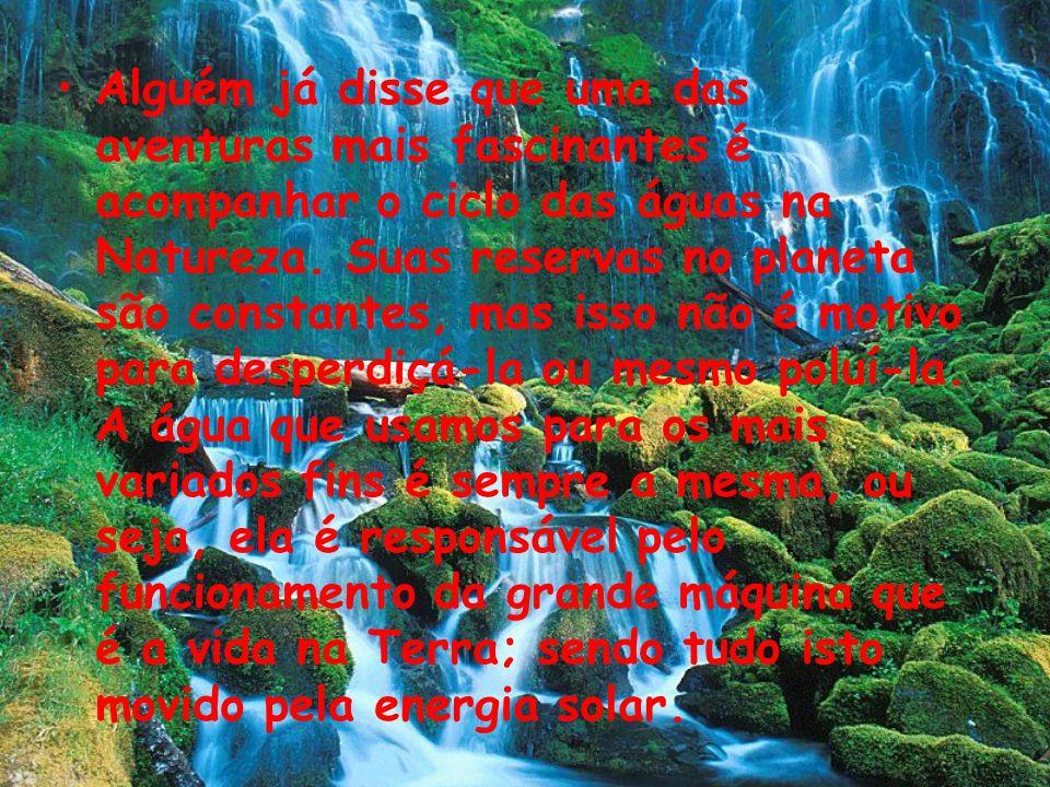 Alguém já disse que uma das aventuras mais fascinantes é acompanhar o ciclo das águas na Natureza.