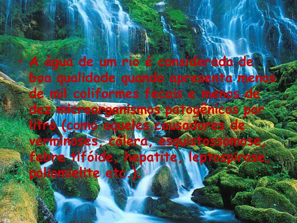 A água de um rio é considerada de boa qualidade quando apresenta menos de mil coliformes fecais e menos de dez microorganismos patogênicos por litro (como aqueles causadores de verminoses, cólera, esquistossomose, febre tifóide, hepatite, leptospirose, poliomielite etc.).