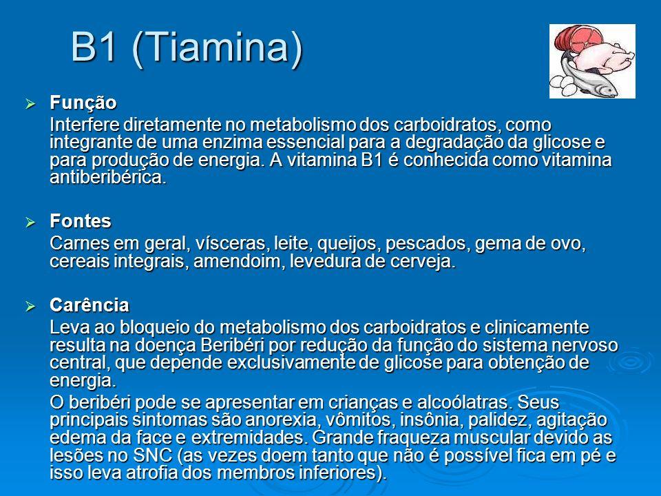 B1 (Tiamina)Função.