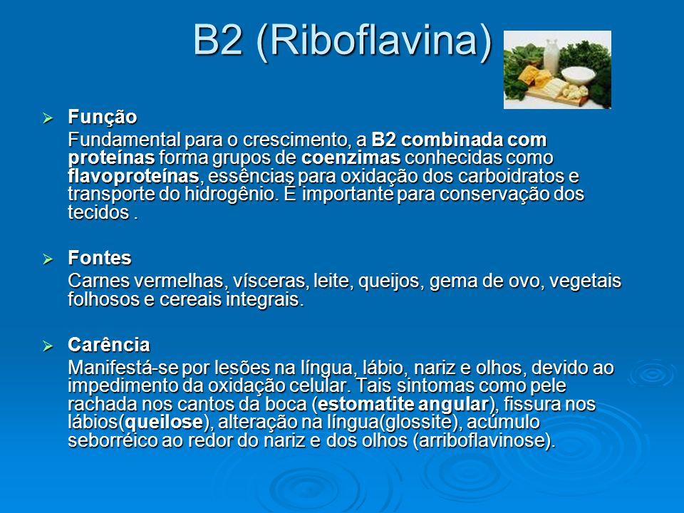 B2 (Riboflavina) Função