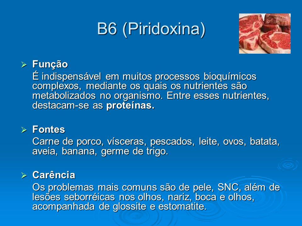B6 (Piridoxina) Função.