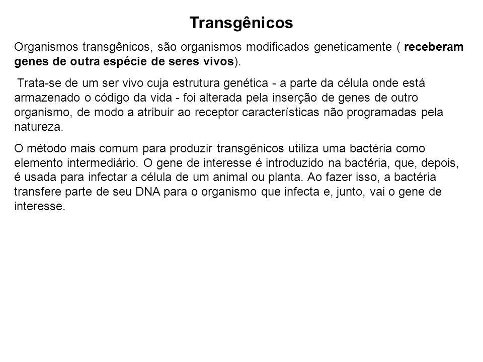 Transgênicos Organismos transgênicos, são organismos modificados geneticamente ( receberam genes de outra espécie de seres vivos).