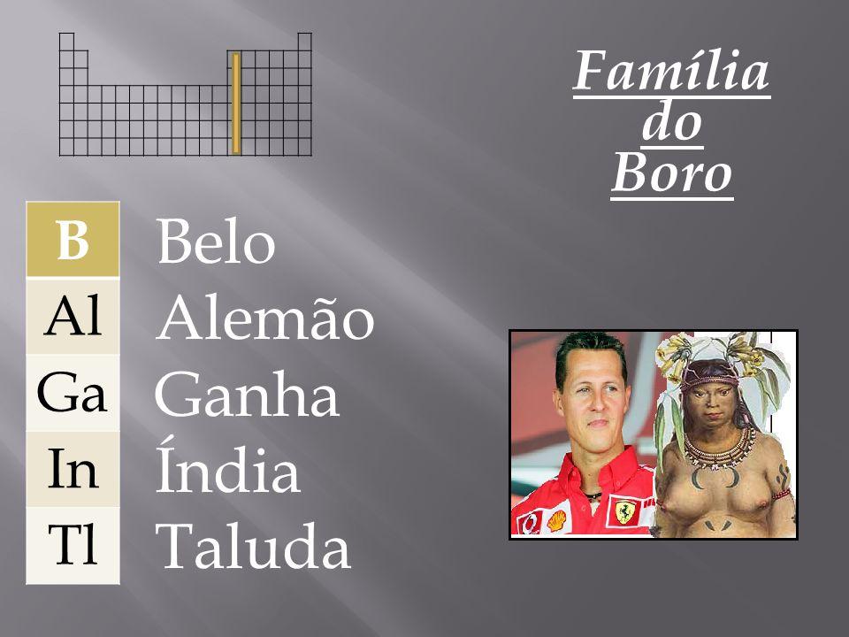Família do Boro B Al Ga In Tl Belo Alemão Ganha Índia Taluda