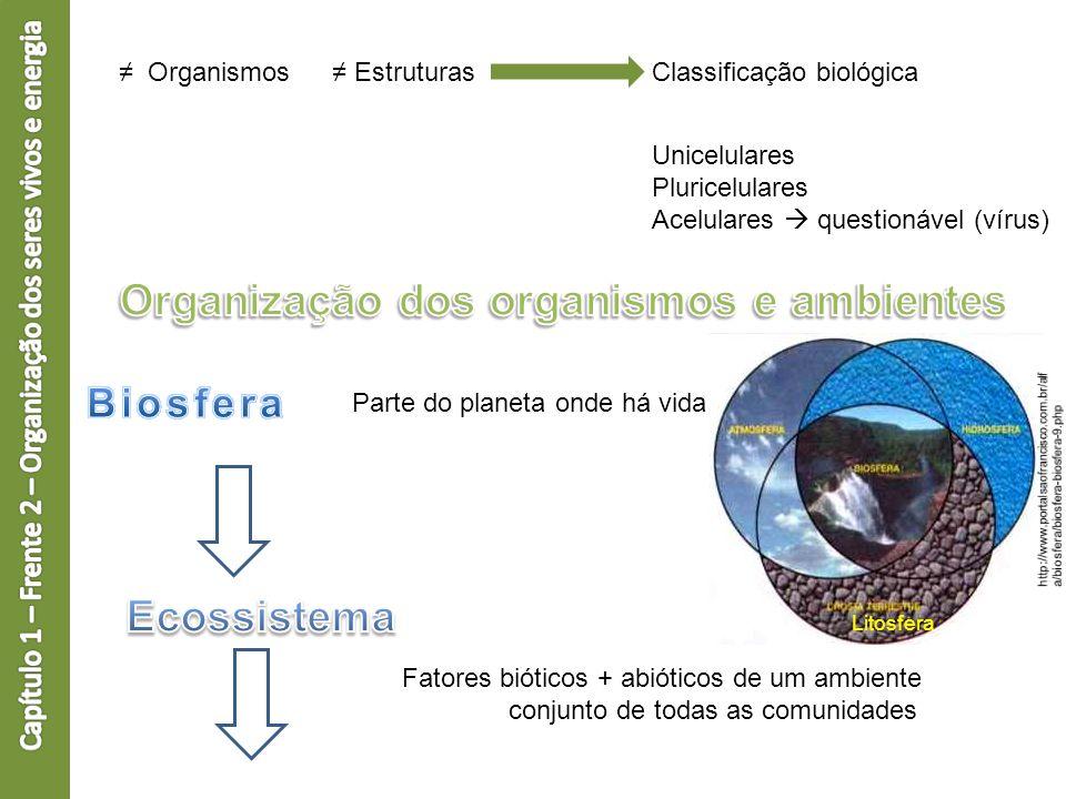Organização dos organismos e ambientes